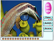 Nice Ocean Animals Hidden Numbers game