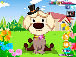 Poodle Contest Makeover game