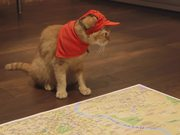 Watch free video Pizza Hut Campaign: Destination Checked!