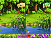 A Green lawn 5 Differences game