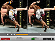 Ultimate Fighting Differences game