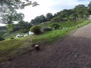 Watch free video Things to See at Hikone Park in Shiga