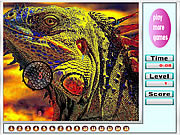 Juega al juego gratis Wild Colorful Iguanas hidden numbers
