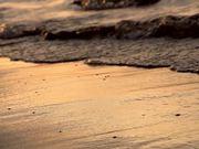 Sunset Waves Close Up