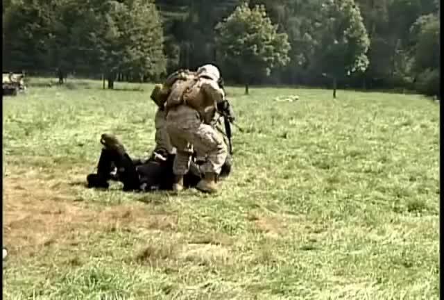 Mira dibujos animados gratis Marines Use Non-lethal Force During Demonstration