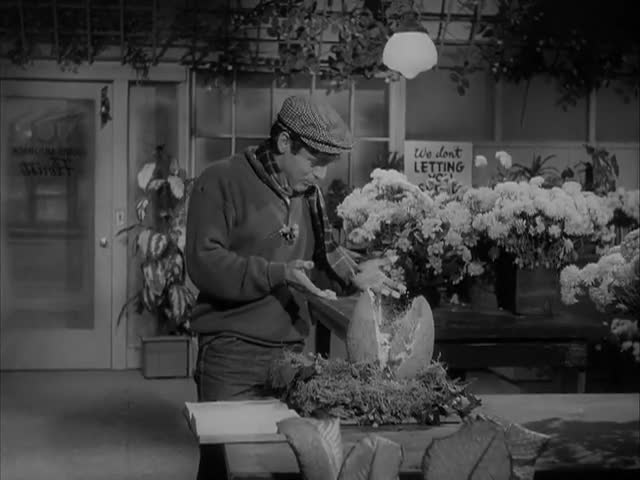 Watch free video The Little Shop of Horrors
