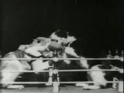 Watch free video Professor Welton's Boxing Cats (1894)