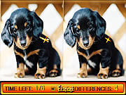 Differences in Puppy Land game