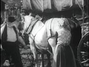 Watch free video Wagon Wheels ( Zane Grey Western)