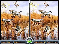 Birds Differences game