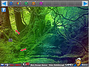 Rainbow Forest Escape game