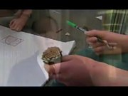 Watch free video Los Alamos Public Schools