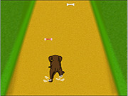 Dog Dash game