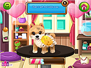 Juega al juego gratis Paws to Beauty: Valentine Edition