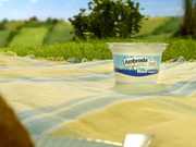 Watch free video Ambrosia Commercial: Picnic