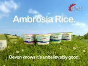 Ambrosia Commercial: Picnic
