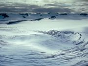 Watch free video To the Arctic - Meryl Streep Featurette