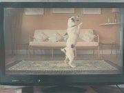 Watch free video Thinkbox Commercial: Harvey and Rabbit