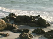 Watch free video A Florida Beach