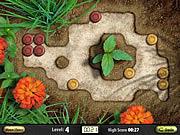 שחקו במשחק בחינם Rock Garden