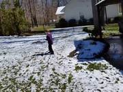 Watch free video The Snowballs