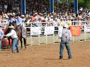 Watch free video Arcadia Rodeo