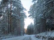 Vivaldi - Winter & Punkaharju