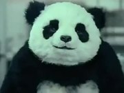 Watch free video Panda Cheese Commercial