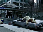 Watch free video Plane Stupid Commercial: Polar Bear