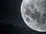 """Watch free video Horror Movie """"The Hunting Moon"""" Against Malaria"""