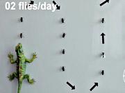 Mira dibujos animados gratis Emmentaler Commercial: Gecko