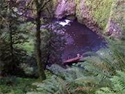 Watch free video Small Creek