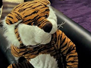 Watch free video Electronic Arts Commercial: Tiger
