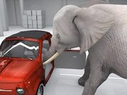 Watch free video Elephant Trying the Impossible
