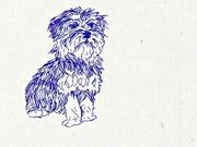 Watch free video RSPCA NSW Videos: Pets