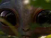 Watch free video Crunchy Nut Commercial: Aliens