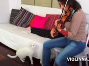 Mira dibujos animados gratis Violinna Vs White Cat