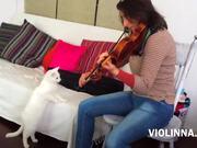Watch free video Violinna Vs White Cat