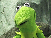 Watch free video Kermit has a Meltdown