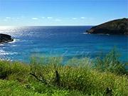 Watch free video Hawaii Ocean