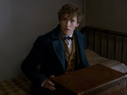 Watch free video Fantastic Beasts and Where to Find Them