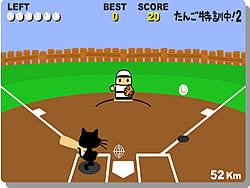 Cat Baseball game