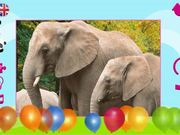 Watch free video Puzzles: Zoo