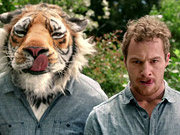 Watch free video McCoy's Commercial: Ultimate Tiger