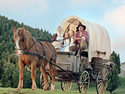 Watch free video Square Habitat: Little House on the Prairie