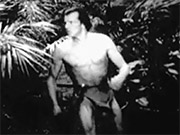 Watch free video The New Adventures of Tarzan Chapter 2