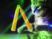 Mira dibujos animados gratis Meow Mix Video: A Meow Mix by Ashworth