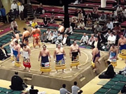 Mira dibujos animados gratis Sumo Wrestlers