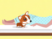 Watch free video Naughty Corgi - Royal Baby BumperDash