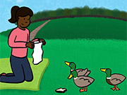 Watch free video Why I Hate Ducks
